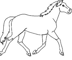 Animaux Cheval