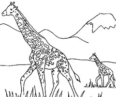 Coloriage Animaux de la savane Africaine