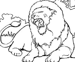 Coloriage Animaux Lion