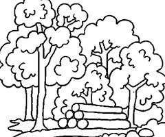 Coloriage Arbre For�t