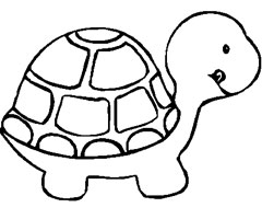 Coloriage B�b� Tortue