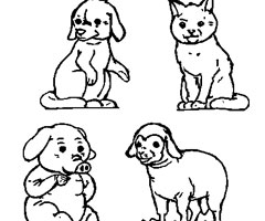 Coloriage B�b�s Animaux