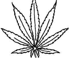 Coloriage Cannabis