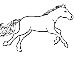 Coloriage Cheval Galop