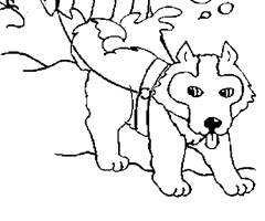 Pointworld earn points for free stuff and rewards - Coloriage chien de traineau ...