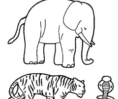 Coloriage D'animaux
