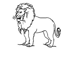 Dessin de lion for Les lions du meuble