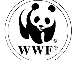 Coloriage Wwf