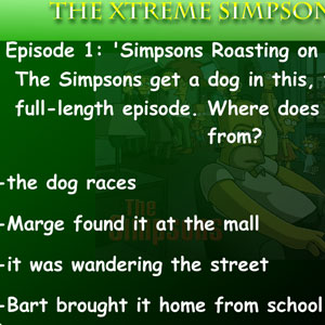 Jeu The Xtreme Simpson Test